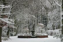 Winter Time / Snow Pictures
