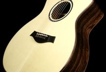 Taylor / The latest guitars from Taylor available at The Music Zoo!