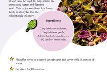 herbalism for kids