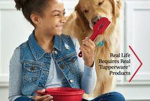 Tupperware Catalogues & Sales Brochures