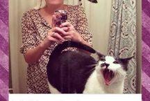 Meow. / by Alyssa Garthright