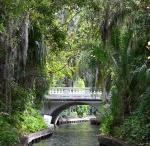 Orlando / by Arrive Orlando