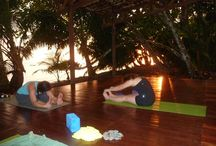 Yoga at the real Rainforest  / yoga in nicuesa lodge / by Nicuesa Lodge
