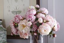 Blomster & vaser