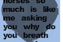 Sayings about horses