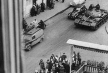 suli -1956