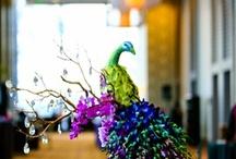 peacock centerpieces