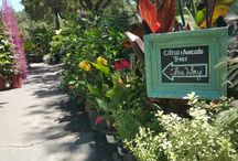 Flora Signs! / Get inspired with our custom-made signs by Stefani Blaine! #gardencenter #ojaiflora #inspiration