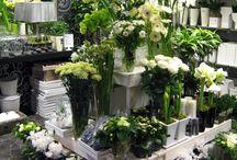 lovely flowershops