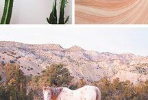 Desert Love Photoshoot