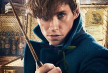 Harry Poterrr