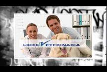 Centro Veterinario Líder veterinaria