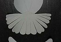 krtiny jeronicek