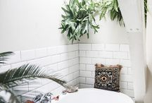 Indoor Home Living With Plants