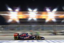 2014 BAHRAIN GRAND PRIX / 2014Bahrain Grand Prix, Sakhir, Bahrain #STR9 #GOTOROROSSO #BAHRAINGP #F1