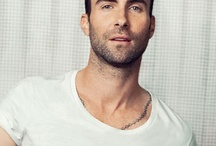 Adam Levine / Yep, Adam Levine is my number 1 celeb crush. He is absolute perfection and when it comes to all things Lefine related I get kinda creepy!