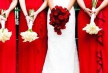 Esküvő Bíbor