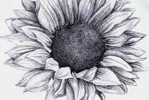 Art - Florals