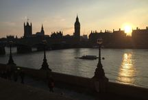 TripTide.London