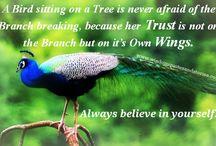 ❤ Trust Quotes ❤