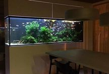 aquarium furniture insp