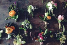 For the guys / Buttonholes, Boutonnieres and so forth.