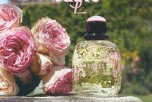 perfumes maravilhosos