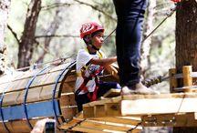 Parco Avventura Selva Reale / Percorso acrobatico tra gli alberi per bambini fino ai 12 anni nel cuore del bosco,