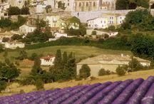 Provence...Mon Amour!