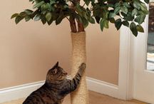 DIY scratching post