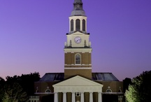 Beautiful Campus Scenes / by Church Hill Classics