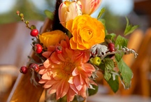 Flowers / by Judy Smith