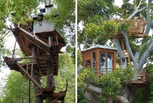 Tree Houses / Tree houses I would build in my back yard