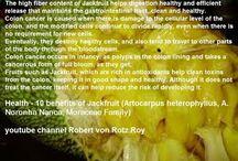 Health - 10 benefits of Jackfruit (Artocarpus heterophyllus, A. Noronha ...