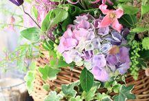 Fleurs paniers