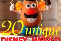 Disney World! / by Erica Centak