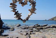 Driftwood ....
