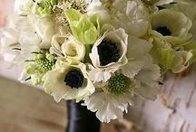 Weddings / by Tammy Brewer