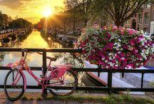 Amsterdam Low Budget