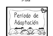 periodo de adaptacion