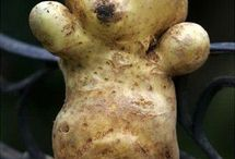 Funny vegetables and fruits