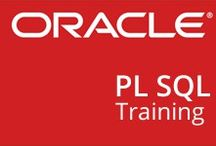 Best Oracle Training in chennai / Oracle Training