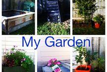 Fannys Garden ideas