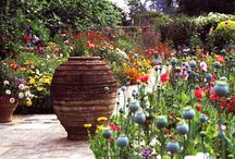 Pots & Vases / by Garden Design