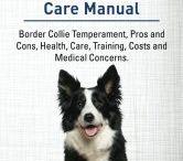 Border collie books / Border collie books we recommend