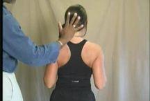 Cervical Alignment