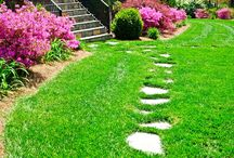 Walk this Way / A garden walkway can be form AND function.  Getting from point A to point B has never been so beautiful.