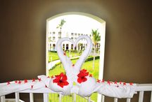 *THE BEST OF PUNTA CANA* / Holiday at Punta Cana, Dominican Republic.