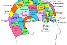 reflexology charts and treatment