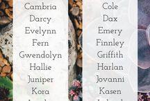 Namen hühner